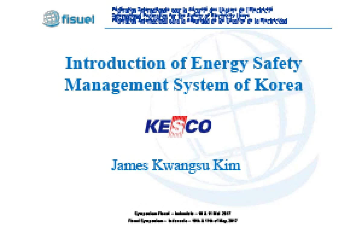 Introduction of Energy Safety Management System of Korea